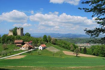 Iz arheološkega najdišča Rifnik se odpre razgled preko Voglajnskega gričevja. Vidi se tudi Stolp Ljubezni na Žusmu.