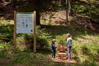 Na Pohorju so uredili Škratovo učno pot na Rogli, ki je namenjena otrokom, ki imajo radi gozd.