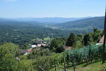 K Smuku na Semiški gori vodi več poti, preko Semeniča in mimo studenca.