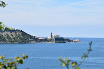 Na izletu na Strunjanski križ se odpre izvrsten razgled na Piran.