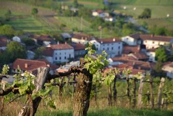 Sveti Socerb se nahaja na razglednem vrhu visoko nad Vipavsko dolino.