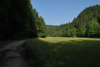 Talež je na razglednem vzhodnem robu Jelovice nad Savsko ravnjo.