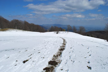 Na Trdinov vrh se odpravimo od izvira zdravilne vode Gospodična.