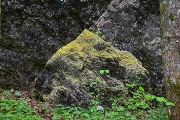 Velike Lašče so cilj Velikolaščanske kulturne poti, ki nas vodi v dolinico imenovano Peči, kjer je pod visokimi stenami kraški izvir.