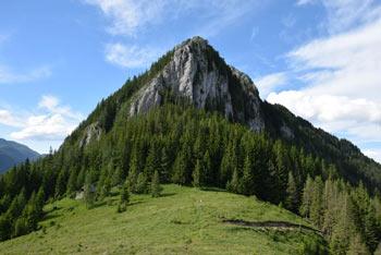 Na Velikem Rogatcu se odpre razgled na številne sosednje planine in vrhove. Najbližnji sta Menina in Kašna planina.