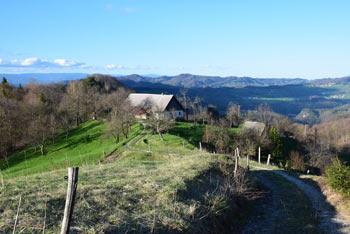 S Velikega Kozjega se zlasti lepo vidi proti Kumu, pa tudi proti Donački gori in Boču.