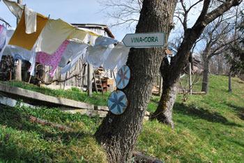 Iz Vine gore se odpre razgled na Sotelsko gričevje, dolino Bistrice in vas Pilštanj.
