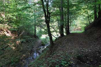Z gradom Vodrižom je povezana zgodba o puščavniku, ki je živel med njegovimi zidovi.