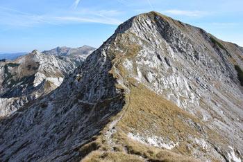 Vogel je piramidast in zelo razgleden vrh v osrednjem predelu Spodnjih Bohinjskih gora.