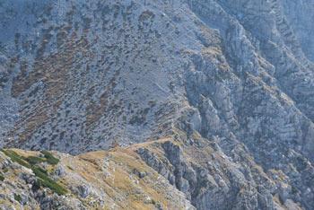 Vrh Planje se nahaja v južnem predelu Julijskih Alp. Je na zahodnem predelu Spodnjih Bohinjskih gora, zato se z nje ob jasnem vremenu vidi od Triglava vse do Jadranskega morja.