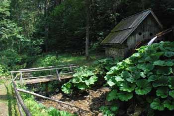 Žagerski mlin v Podvolovjeku pod Rogatcem in Lepenatko je primeren za družinski izlet za otroke.