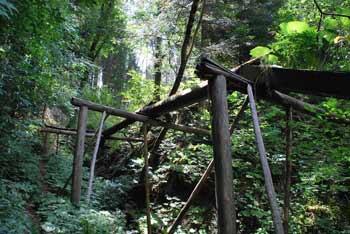 Žagerski mlin je mišljen kot postanek na izletu v višje hribe okoli Podvolovjeka.