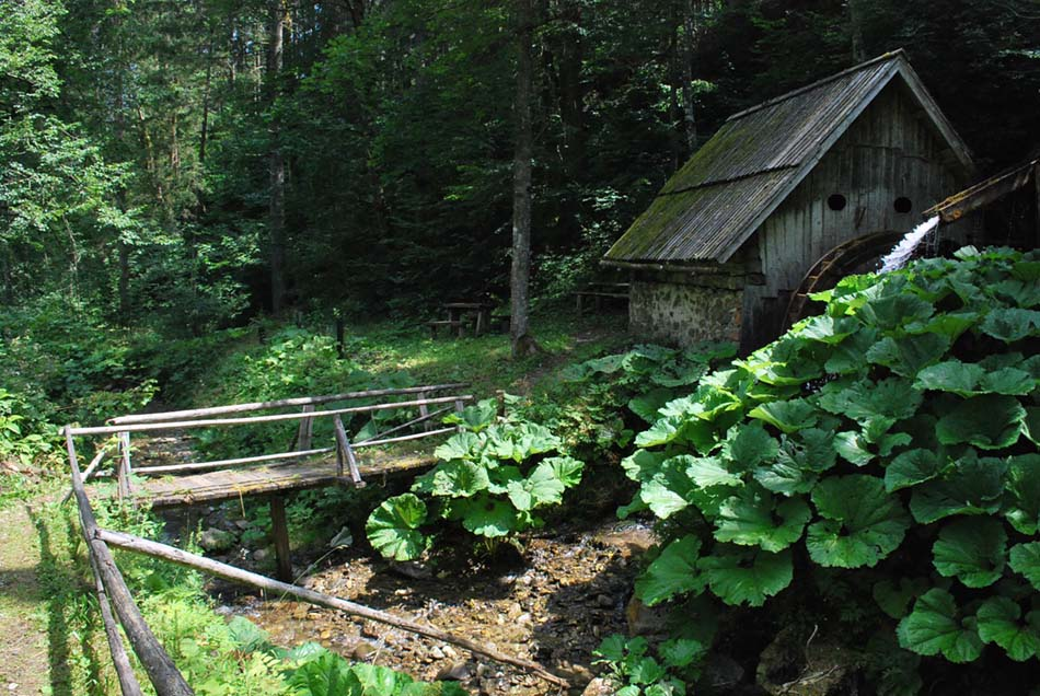 Žagerski mlin je star več kot 250 let in je eden izmed še zanjih ohranjenih te vrste pri nas.