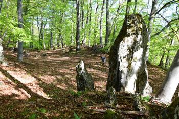 Žamboh ima nadvse slikovita zahodna pobočja, po katerih se povzpnemo mimo megalitskih skal.