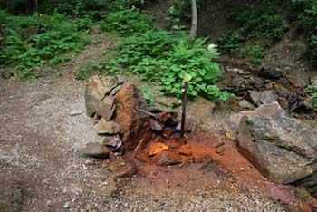 Mineralni izvir Železna voda se nahaja pod Olševo visoko nad Solčavo.