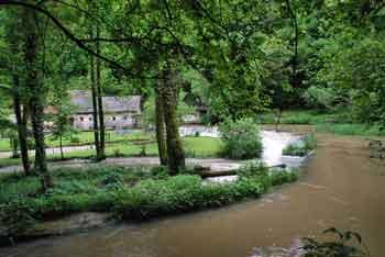 Zijalo je visoka stena pod katero je bruhalnik vode reke Temenice.