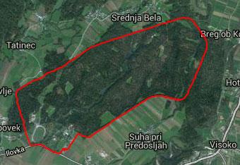 Orientacija okoli Brda pri Kranju je zelo preprosta.