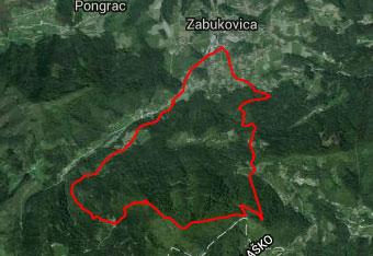 Preko Gozdnika vodi krožna pot po kateri nas vodi gps navigacija za hitrejšo hojo.