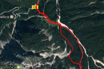 Do Koče v Krnici se sprehodimo skozi gozd, se pa dolina odpre pri prečkanju pašnika, kjer se vidi številne dvatisočake.