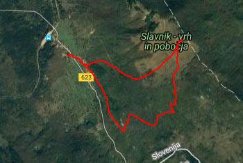Krožna pot nas s Slavnika vodi po dolgi gozdni cesti, ki se zaključi v Podgorju blizu izhodišča.