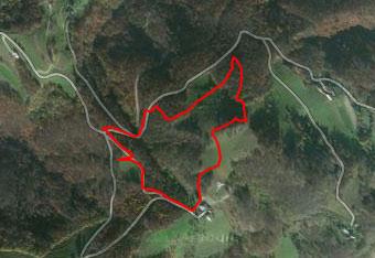 GPS sled nas vodi po krožni poti preko travnatega Veternika nad dolino Bistrice.