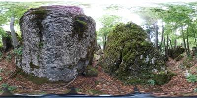 Jelenk je najvišji vrh planote na kateri se nahajajo Šebrelje z jamo Divje babe in razpršen zaselek Idrijske Krnice nad Kanomljo.