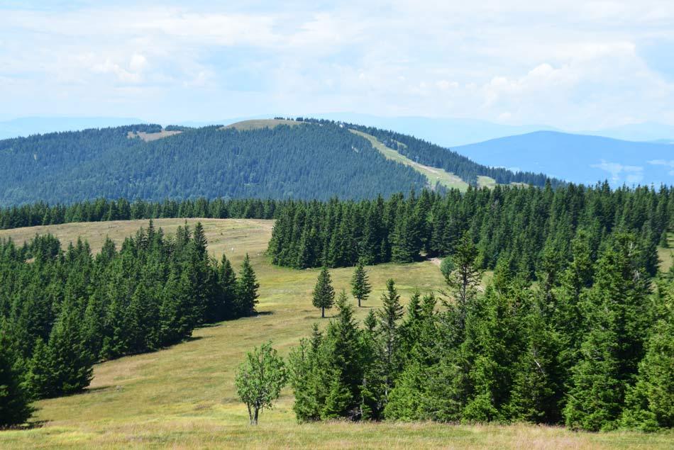 Pogled s Črnega vrha na Veliko Kopo in zadaj za njo Malo Kopo. Desno se v ozadju vidi Ribniško Pohorje.