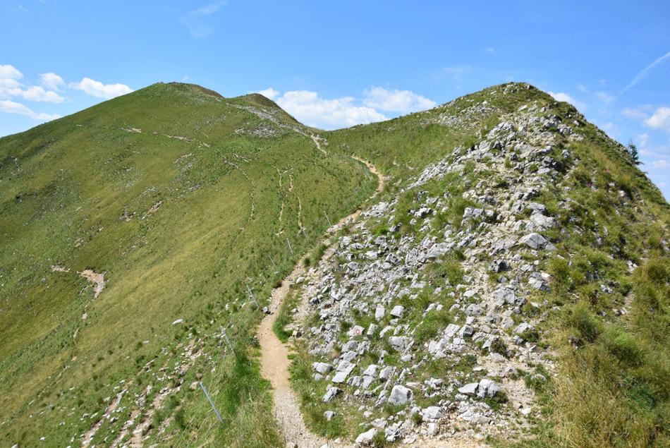 Pešpot tik pod vrhom Golice v Zahodnih Karavnakah.