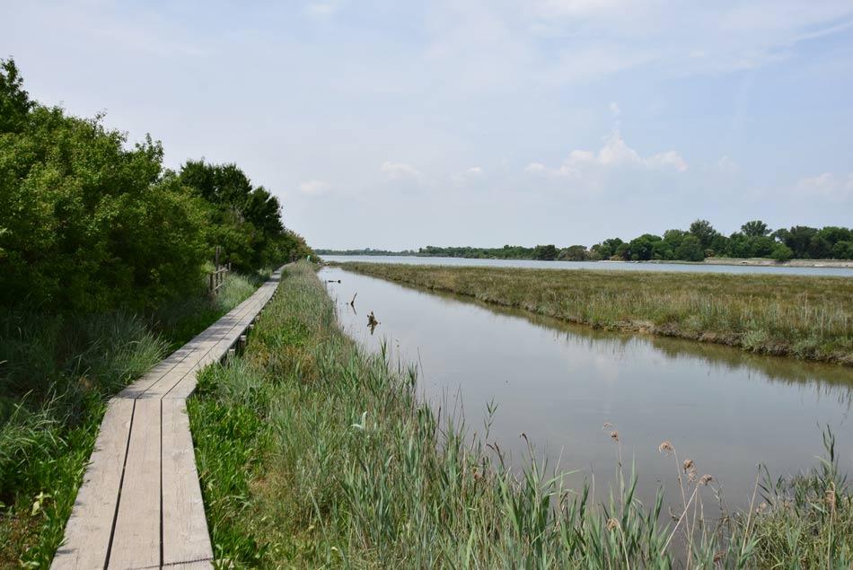 Soča je tik pred izlivom v morje široka in lena reka.