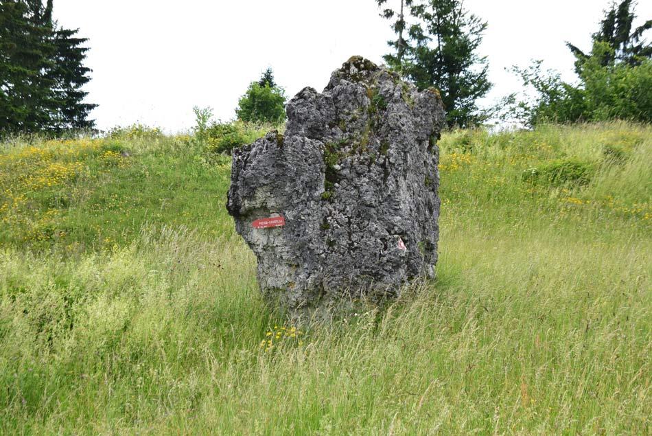 Na vrhu planotastega Jelenka se nahaja visoka megalitska skala kamor hodijo domačini pozimi iskat toploto.