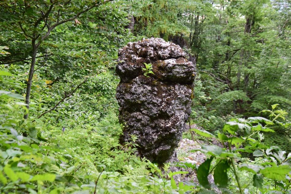 Skrivnostna skala na pobočjih Jelenka spominja na kipe z Velikonočnih otokov.