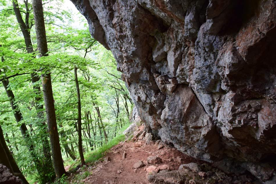 Previsna stena tik pod naravnim oknom, ki je velika posebnost Krvavice in nasploh vsega Posavskega hribovja.