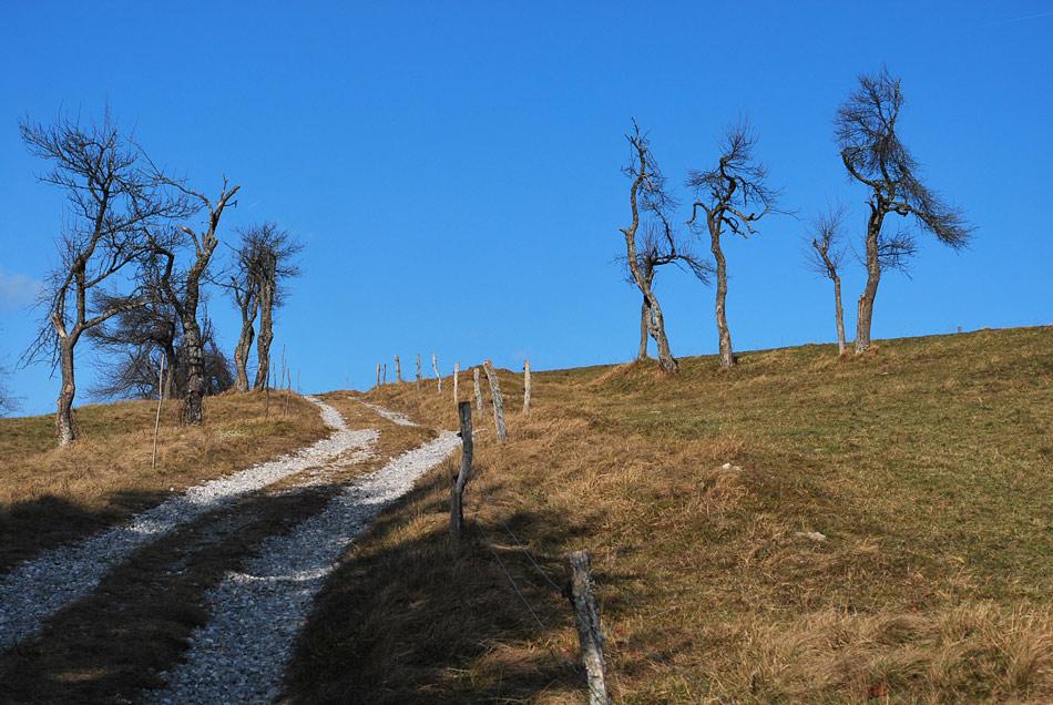 Kolovoz nas vodi na razgleden rob Menišije visoko nad Borovnico.