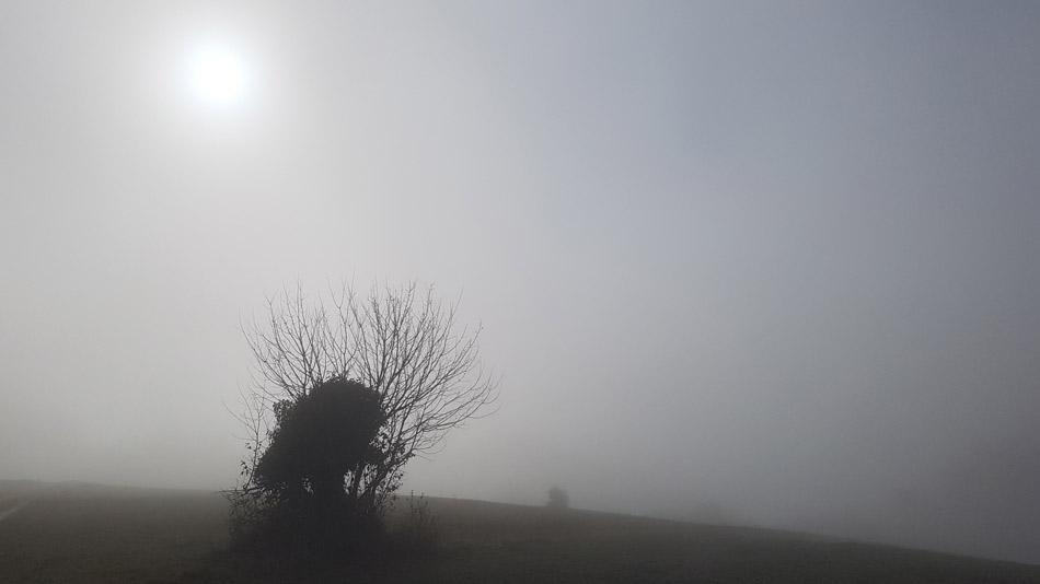 Sence so na poti nad dolino potoka Bukovice risale fantastične podobe.