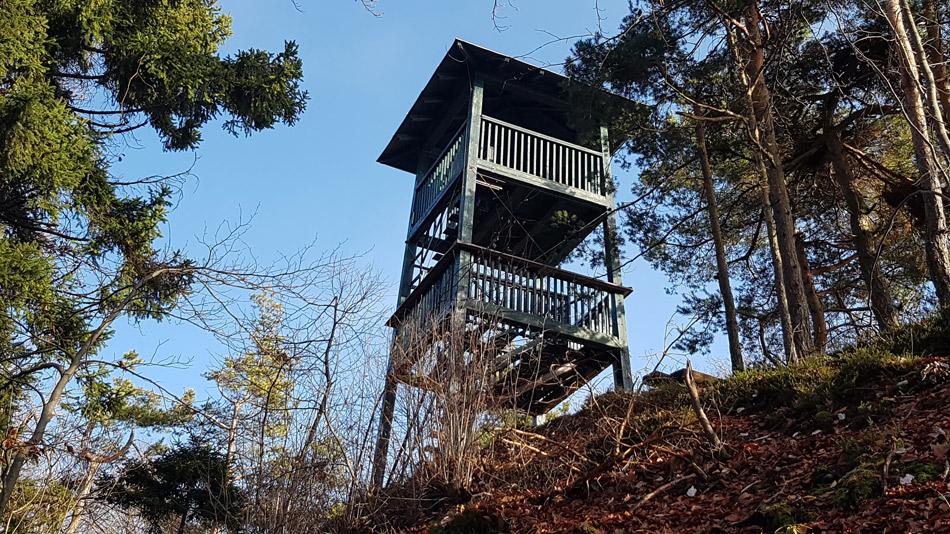Izlet k izginulemu razglednemu stolpu na Osrenci.