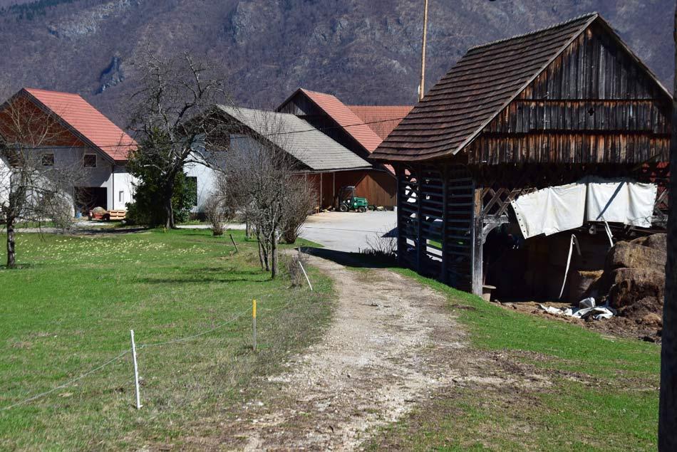 Krožna pot na izhodišče izleta po soteski Pekel nad vodi skozi zaselek Pristava, ki je blizu Pokojišča na Menišiji nad Borovnico...