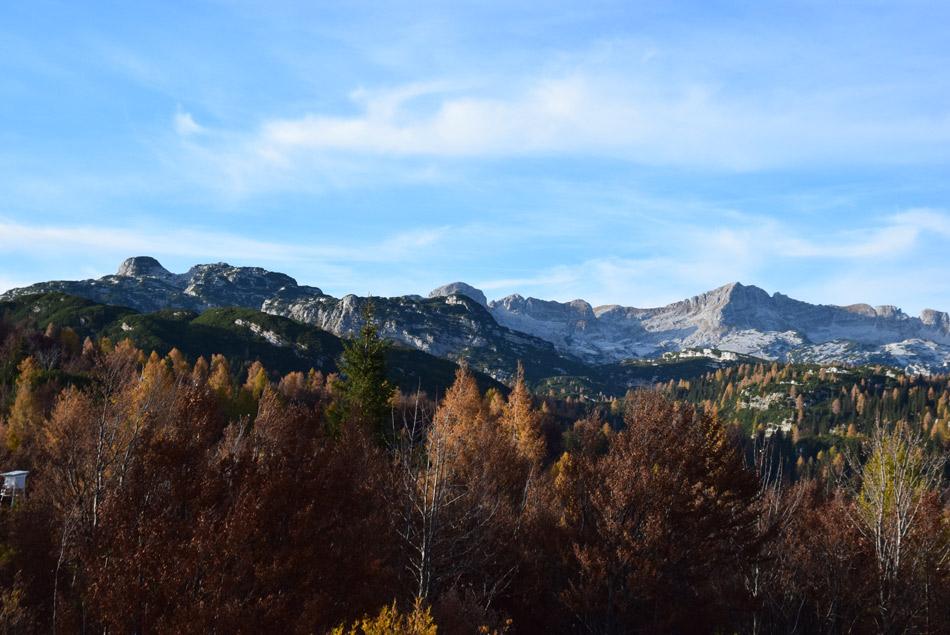 Na poti se nad vrhovi smrek dvigajo vrhovi Spodnjih Bohinjskih gora.