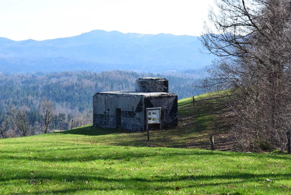 Rupnikova linija na Zaplani poteka preko razglednega travnika na Zaplani.