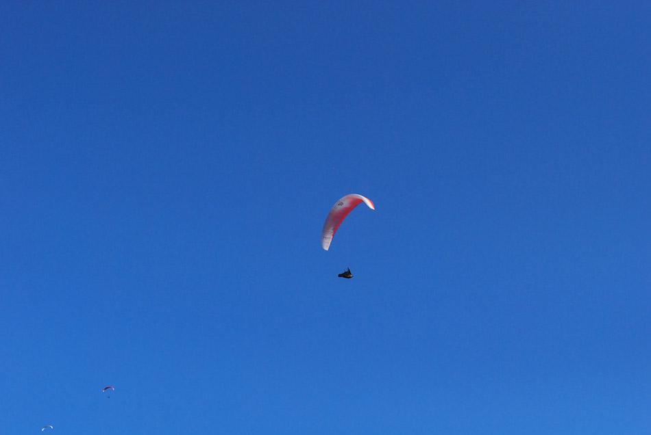 Padalec visoko nad Vipavsko dolino je vzletel s Trnovskega gozda.