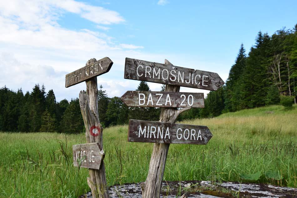 Krožna pot skozi kočevske gozdove nas vodi mimo razpotja za Mirno goro in Bazo 20.